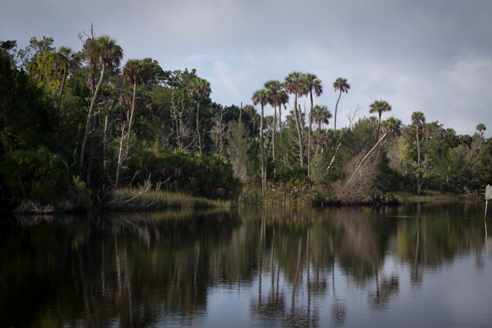 Second To Only The MIghty Suwannee RiverNatural North Floridas - Florida rivers