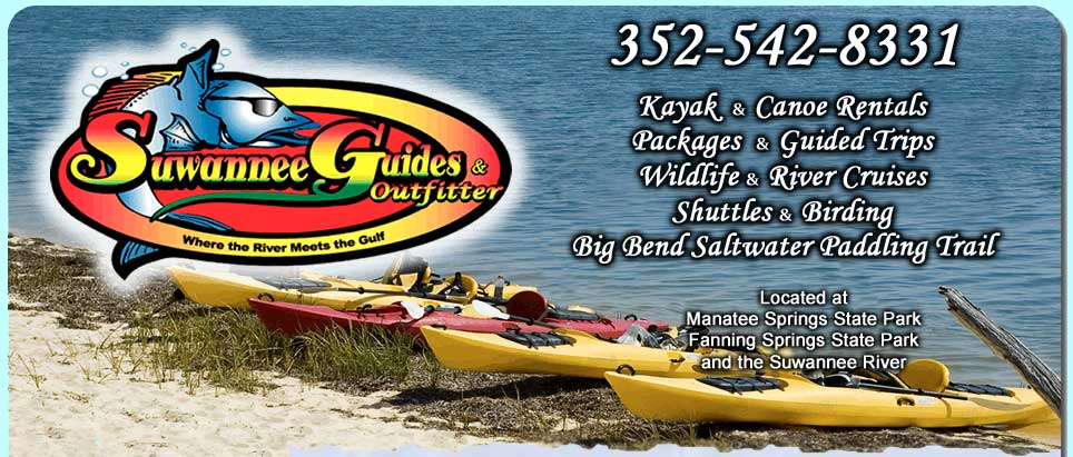 Canoe rentals at manatee springs state park. Kayak rentals. Guided trips and wildlife tours. Big bend saltwater paddling trail.