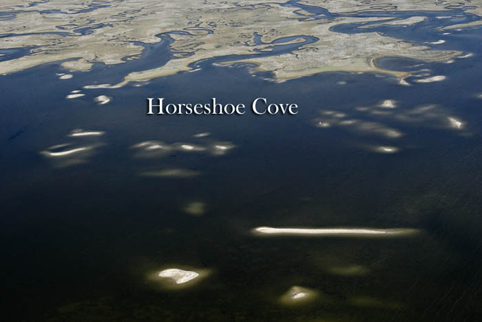 Horseshoe Cove--A Hidden Fishing Destination On Natural North Florida's Gulf Coast