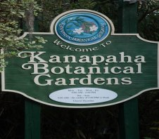 Learn About North Florida's Flora and Fauna At Gainesville's Kanapaha Botanical Gardens