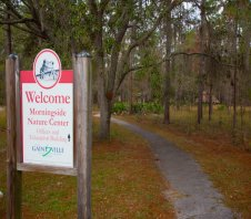 Gainesville's Morningside Nature Center--Take A Walk In Our Woods