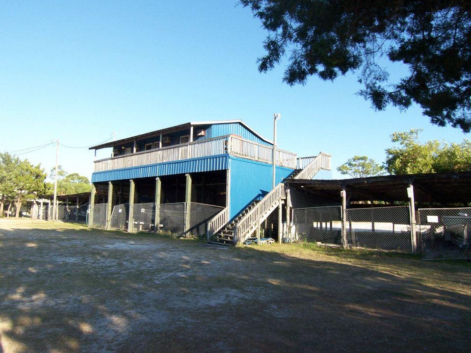 El Sea's Fish Camp