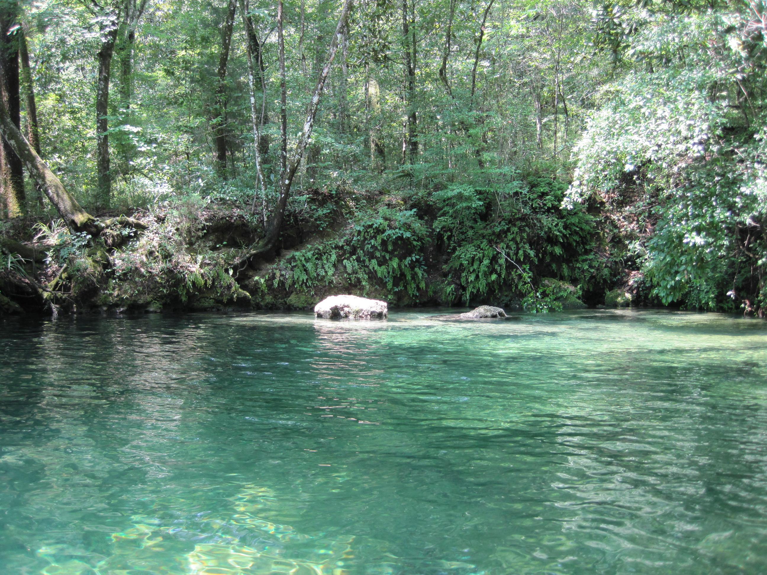 Econfina River Resort