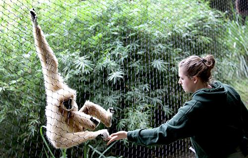Sante Fe College Teaching Zoo