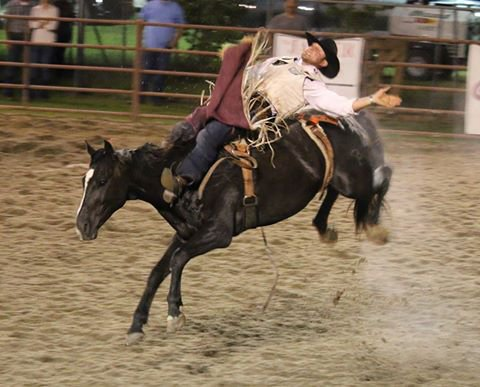 Hamilton County Championship Rodeo Visit Natural North