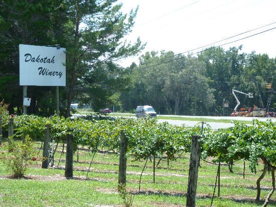 Dakotah Winery