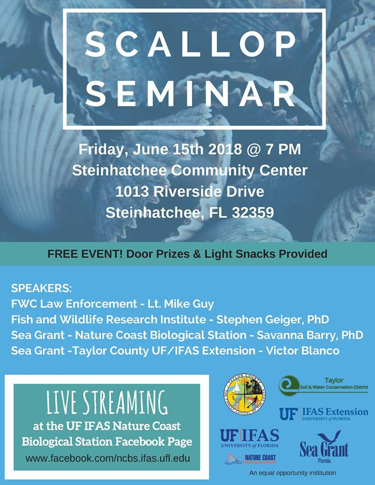 Scallop Harvest Forecast Numbers Will Be Released At The 2018 Scallop Seminar at Steinhatchee, June 15, 7PM