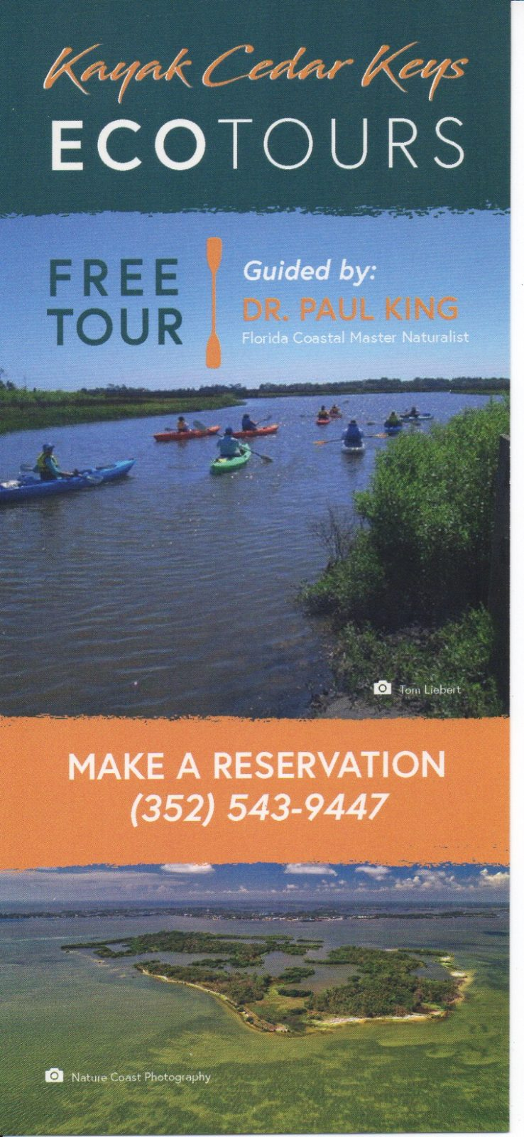 Free* Kayak Eco Tours at Cedar Key