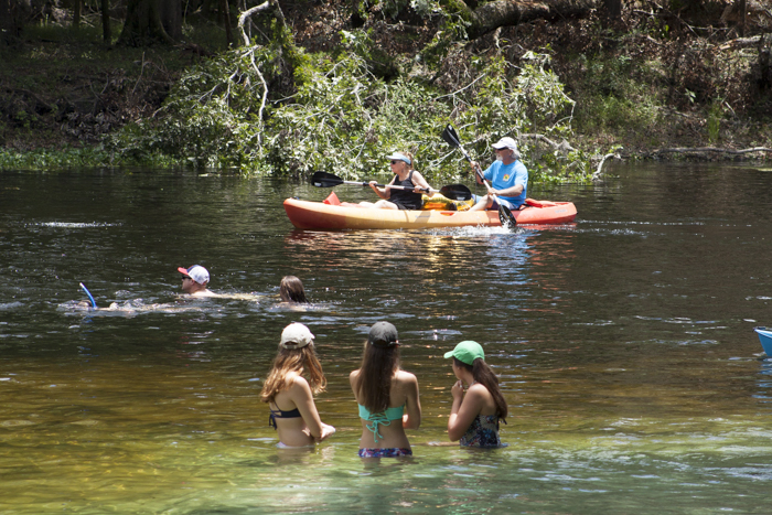 The Suwannee River and It's Tributaries--The Beating Heart of Natural North Florida