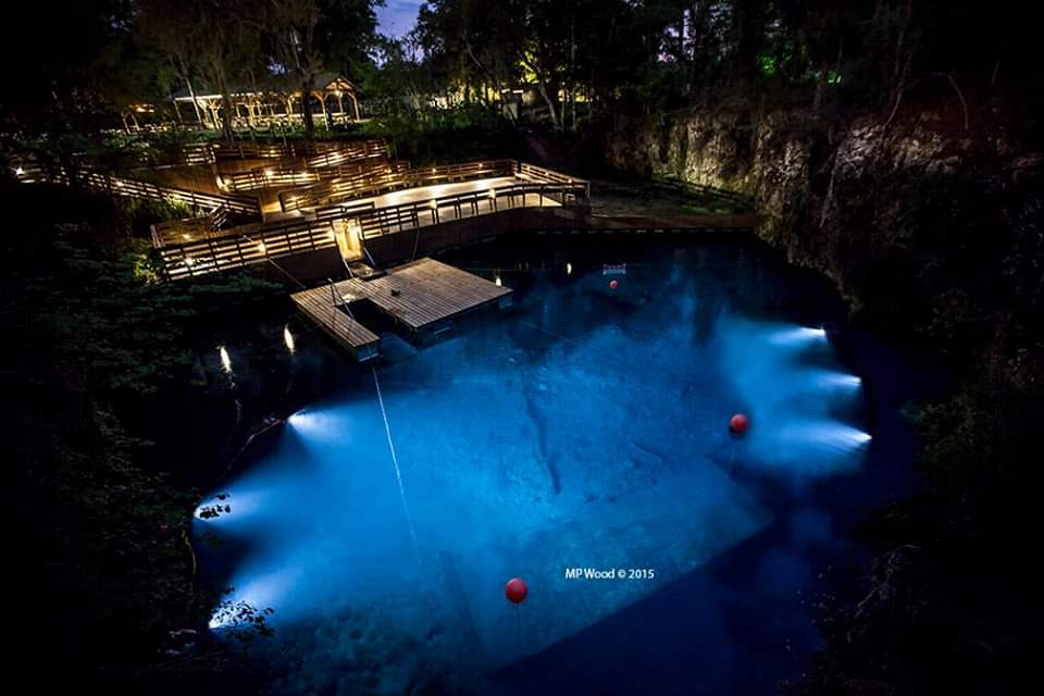 Blue Grotto Guided Night Dive
