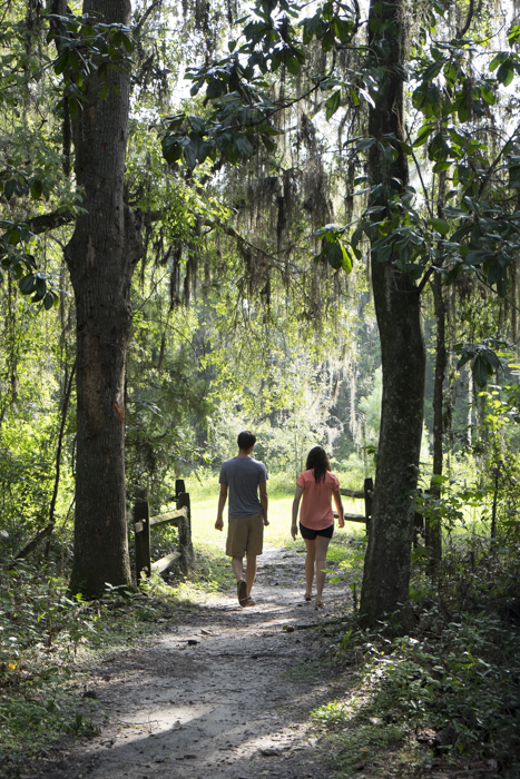 Visit Alachua County's  State Parks, Trails, and Historic Sites