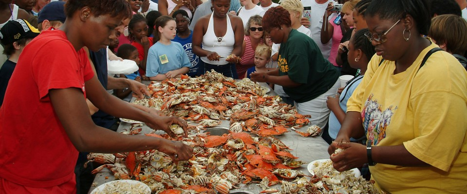 Blue Crab Festival in Wakulla County, FL